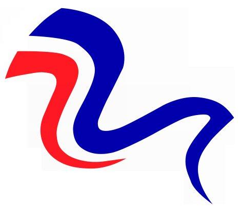 Silueta letícího sokola - grafika XV. všesokolského sletu